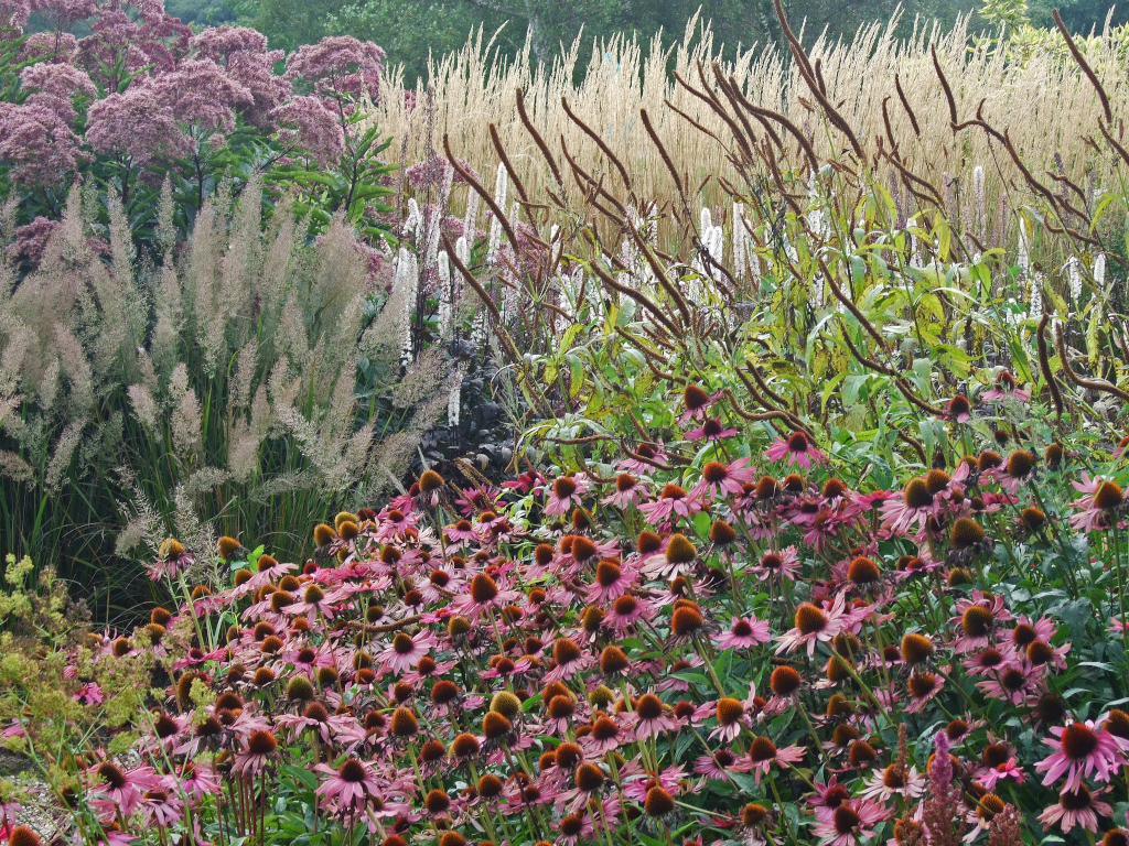 The New Perennialism Open Source Planting Design The