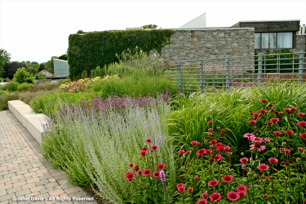Dutch master piet s garden at the tbg the new perennialist for Planting plans with grasses