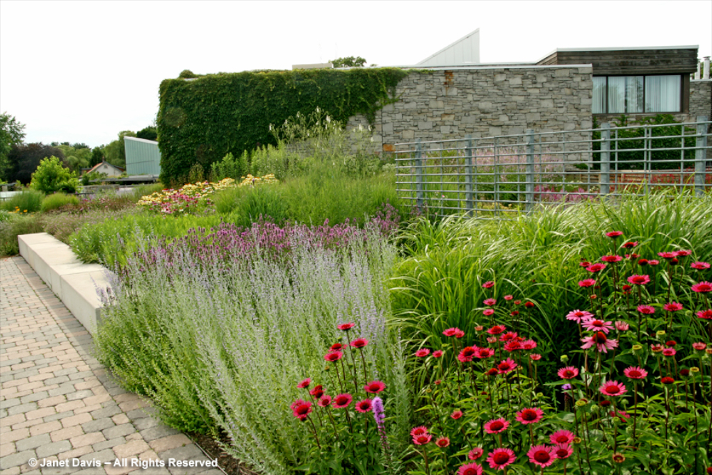 Piets Garden At The Tbg on Small Modern Garden Design