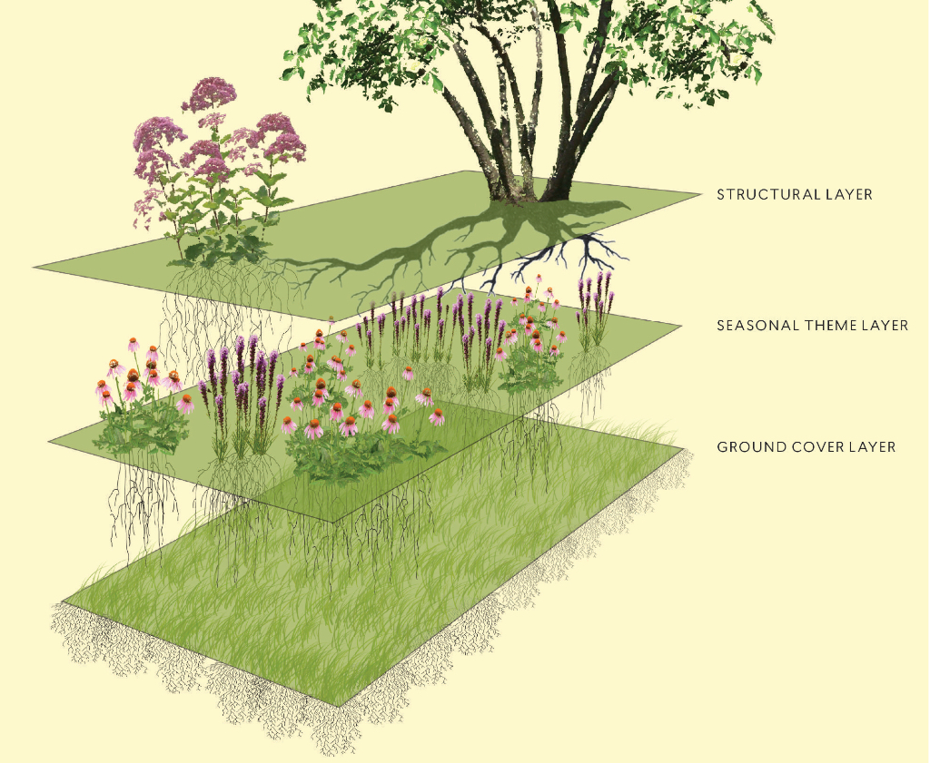 Wild ish at Heart Naturalistic planting design The New Perennialist