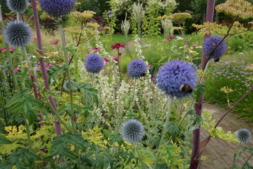 The New Perennialism: Open Source Planting Design | The New Perennialist